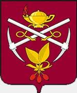 Герб города Кизел.