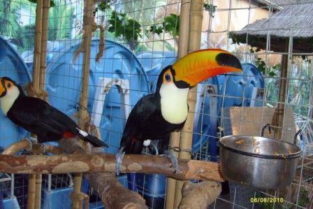 Анапа, зоопарк