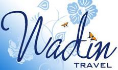 Логотип туроператора Надин трэвел
